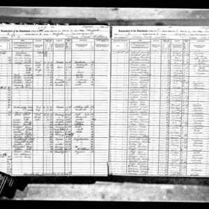 1915 NY State Census example image.jpg