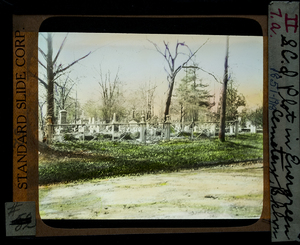 S.C.I. Plot In Evergreen Cemetery_Brooklyn_1851-1918_86.jpg