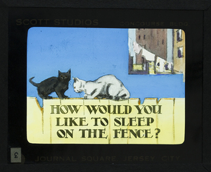 How Would You Like To Sleep On The Fence_19.jpg