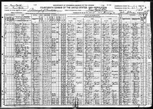 1920 US Census example image.jpg