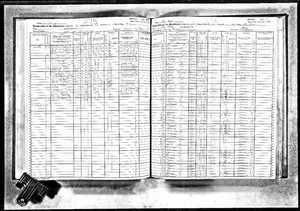 1925 NY Census example image.jpg